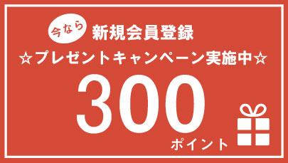 300ポイントプレゼント